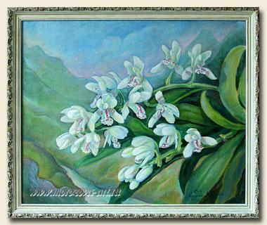 Рисунки орхидей и растений на заказ